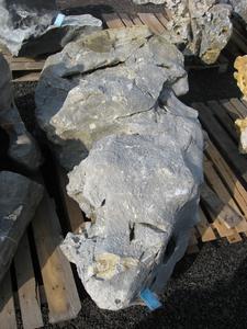 solitérny kameň vápenec